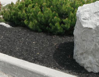 black mulch and rock